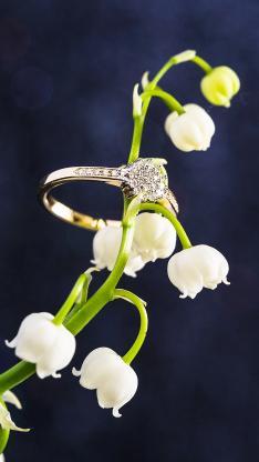 戒指 铃兰 鲜花 创意
