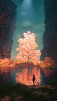 梦境 树木 神秘 梦幻 男子 湖水 倒影