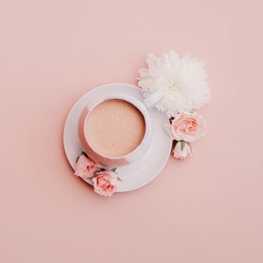 咖啡 非洲菊 鲜花 情调
