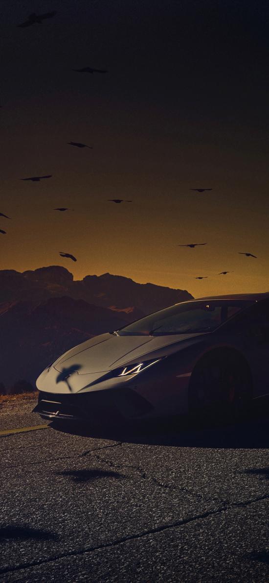 兰博基尼 超级跑车 炫酷 黑暗 道路 鸟