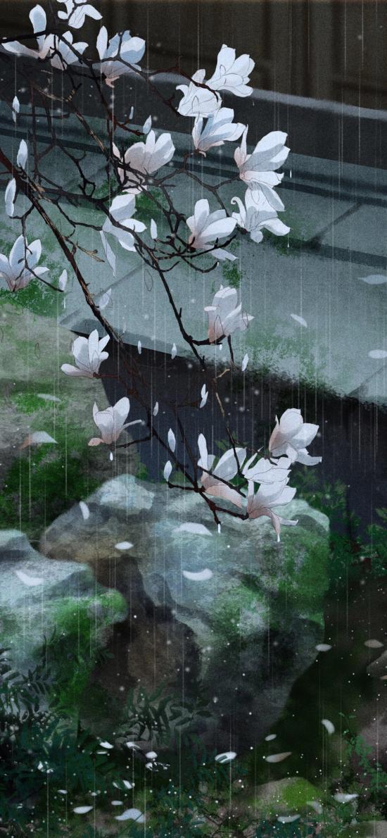 白玉蘭 庭院 水池 古風 繪畫 雨水