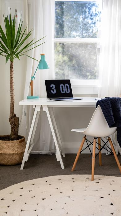 静物 家居 桌椅 绿植