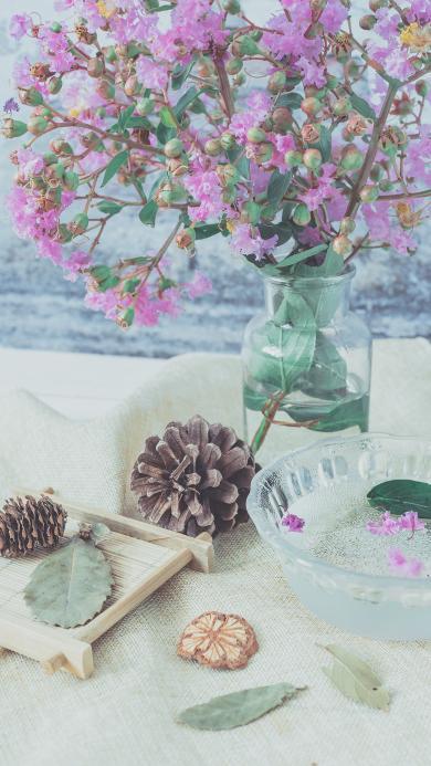 静物 松果 鲜花 文艺