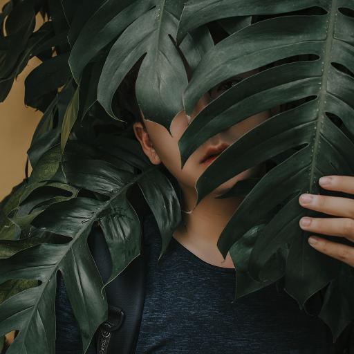 绿植 男子 观赏性植物 遮掩
