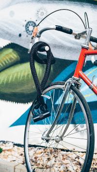 单车 自行车 运动 健身