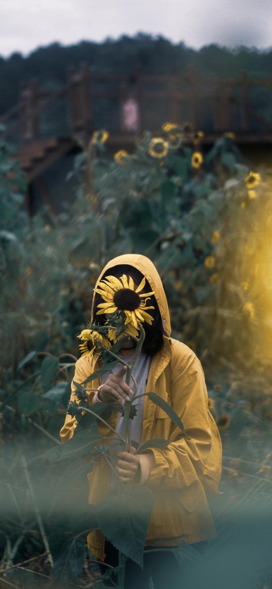 女孩 花丛 写真 向日葵