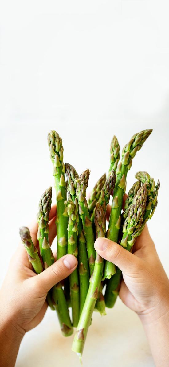 食材 蔬菜 芦笋 绿色