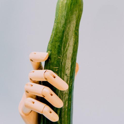 食材 黄瓜 手部 模型