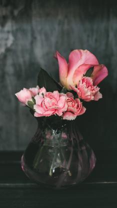 康乃馨 鲜花 花瓶 玻璃瓶
