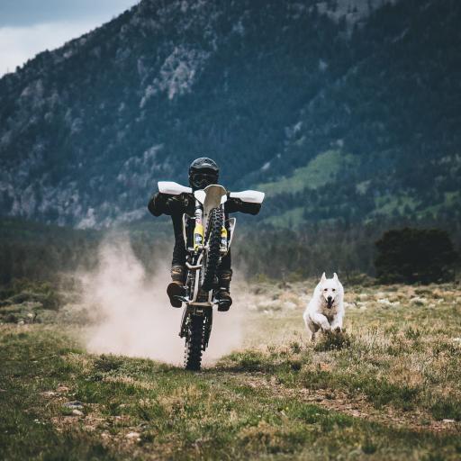 摩托车 越野车 郊外 骑行