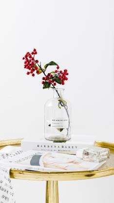 花瓶 插花 红果 装饰
