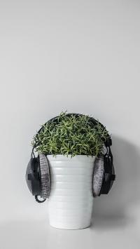 耳机 盆栽 耳罩  绿植