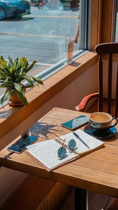 静物 桌台 窗台  绿植 盆栽