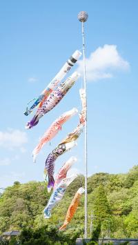 蓝天白云 日本 鲤鱼旗