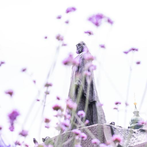 紫色 鲜花 雕像 景点