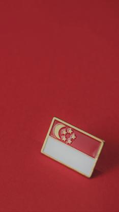 新加坡 星月旗 红白 国旗