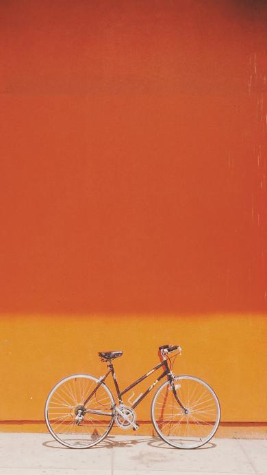 自行车 单车 停靠 橘色 运动