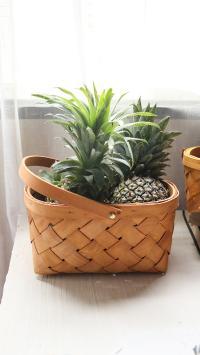 篮子 水果 菠萝 热带