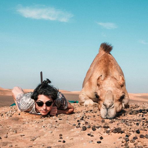 沙漠 欧美 型男 骆驼