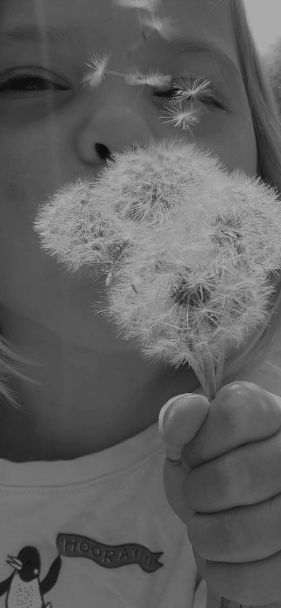 蒲公英 小女孩 儿童 欧美 黑白照