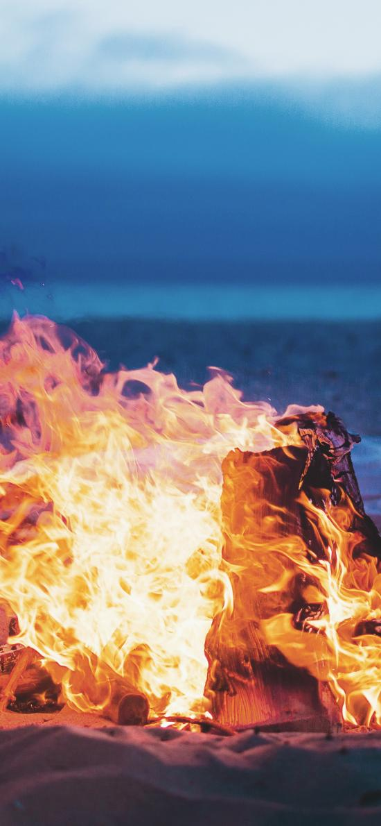 火焰 燃烧 沙地 木柴 柴火