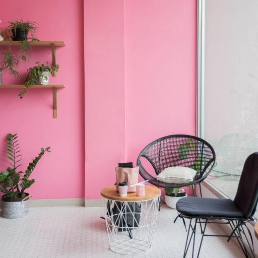 粉色墙壁 装饰 盆栽 观赏
