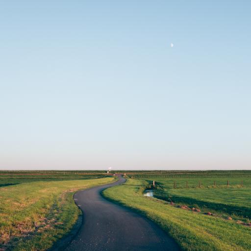 路 蜿蜒 弯曲 草原