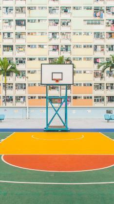 篮球场 运动 楼房 树木