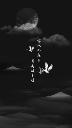 白露 二十四节气 黑白 月亮 露从今夜白 月是故乡明 诗句