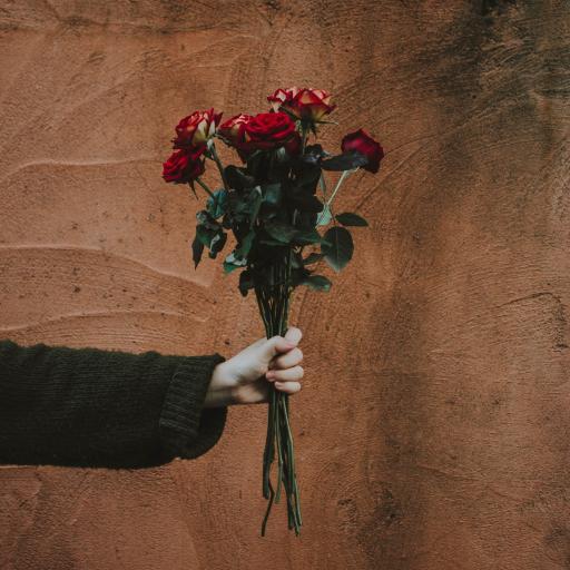 鲜花 手部 花束 玫瑰