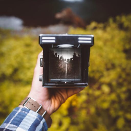 相机 成像 摄影 手