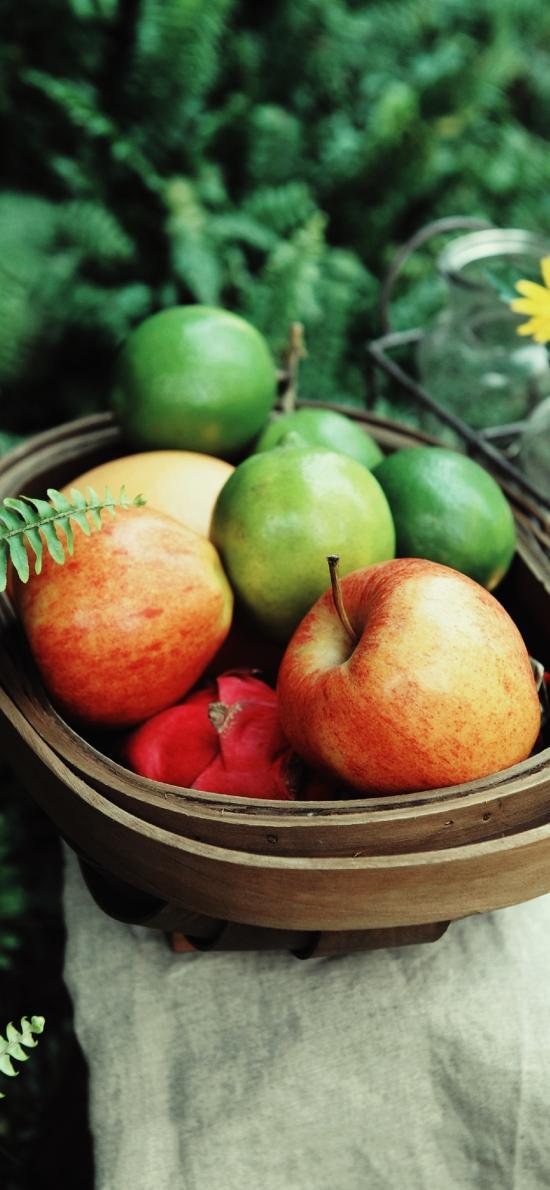 水果 火龙果 苹果 青柠