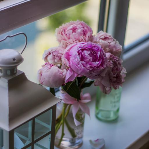 鲜花 花瓶 牡丹 窗台