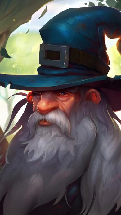 HEARTHSTINE 炉石传说 卡牌游戏 巫师