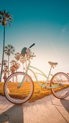 自行车 单车 代步 户外