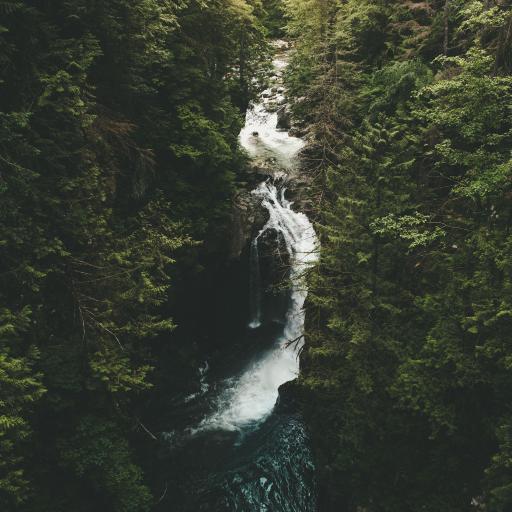 山水 溪流 树木 河流