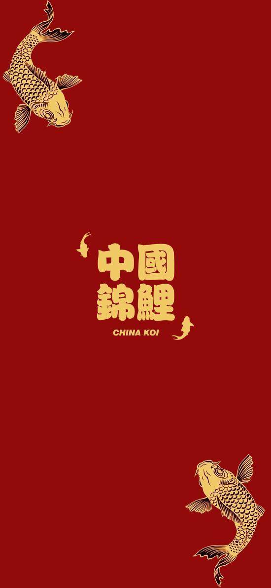 中国锦鲤 红色 鱼