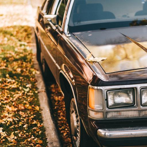轿车 汽车 老式 复古 落叶 街道