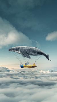 飞船 飞机 鲸 云端 天空 飞行