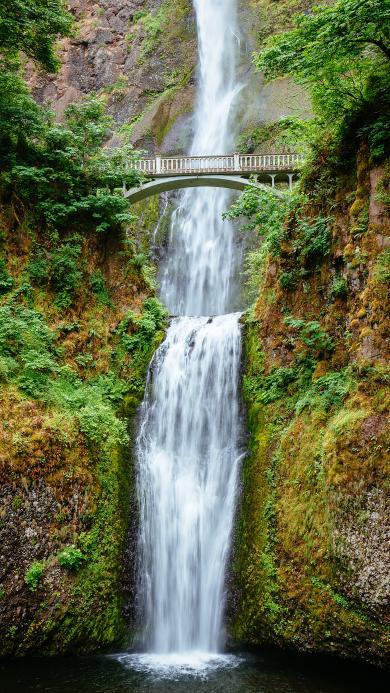 瀑布 景色 桥梁 山林