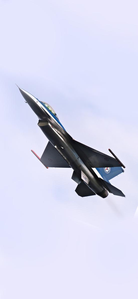 飞机 战斗机 飞行