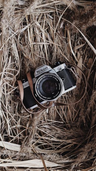 相机 微单 摄影 杂草堆 尼康