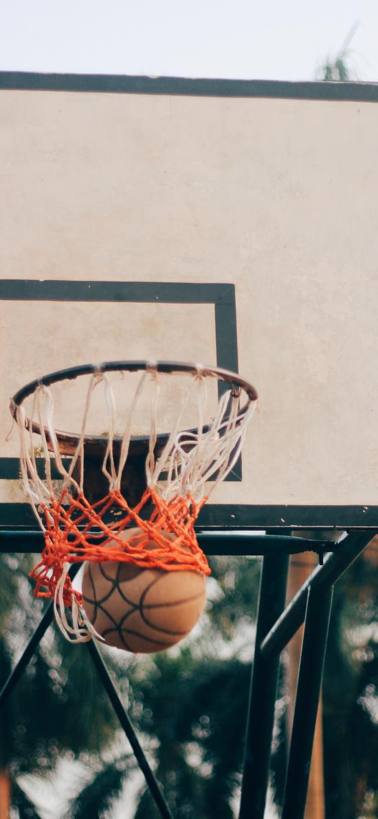篮球 球场 篮球框 运动