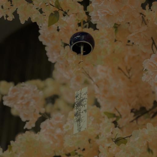 风铃 黄色 鲜花 唯美