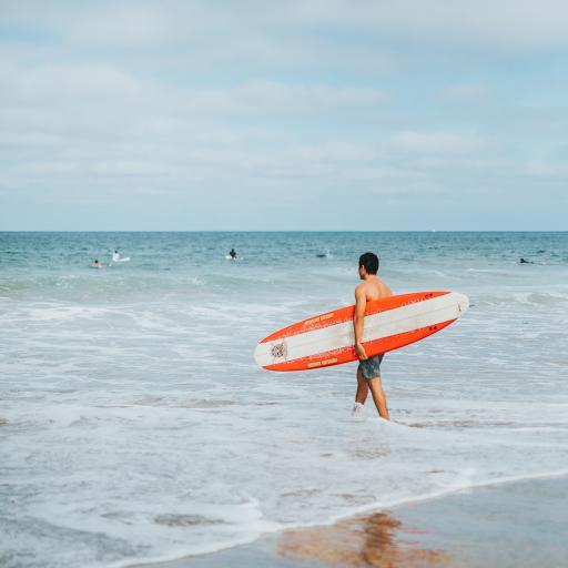 冲浪 大海 冲浪板 沙滩