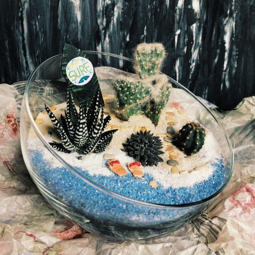 创意 玻璃球 绿植 仙人掌 摆饰