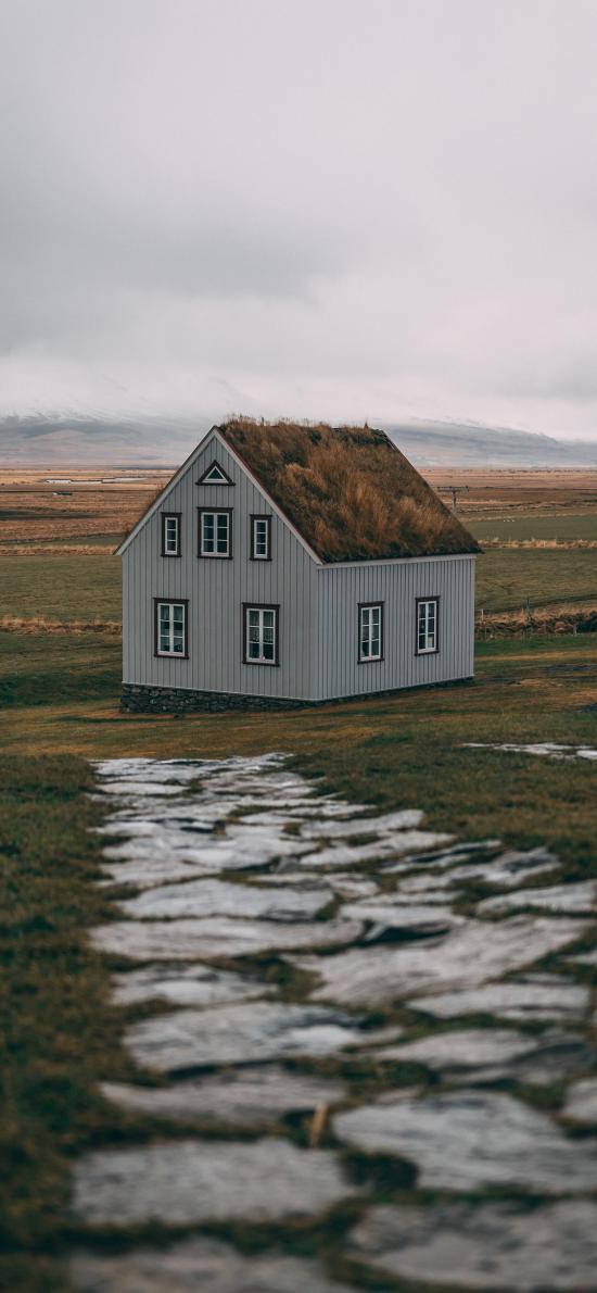 郊外 草坪 建筑 房屋