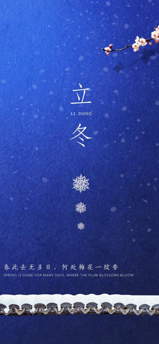立冬 二十四节气 梅花 蓝色 雪花