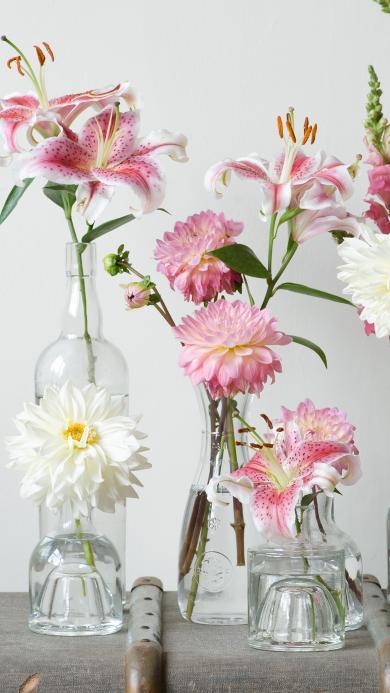 玻璃瓶 薄荷 菊花 插花 粉