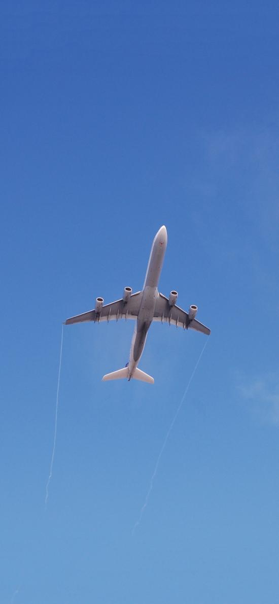 飞机 飞行 航空 蓝色 天空 客机